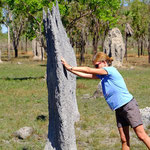 Magnetic Termite Mound Litchfield NP.