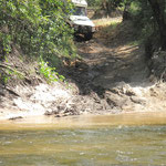 Cockatoo Creek