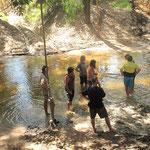 Palm Creek assesment