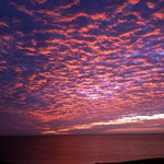 Mauretania Coast
