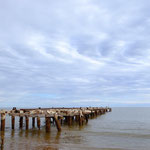 another Carnarvon Jetty