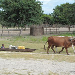 Namibian Transport