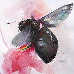 The fly 06/20 30X40CM