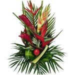 Fleur Exotique et tropicale