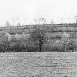 Blick vom Martinville Höhenzug