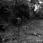 Infanteristen des 175th IR beim Graben von Schützenlöchern