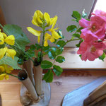 Vases - Sylvie Ruiz Foucher -