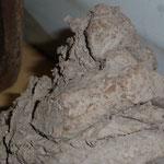 Détail sculpture grès cru - Caco -