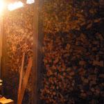 Préparatifs  d'une cuisson ...le bois