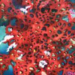 Rote Korallen / Öl auf Leinwand 60 x 80 cm 2020