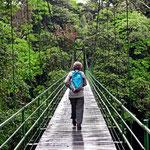 Über diese Hängebrücke kommt man vom öffentlichen Teil von La Selva in das eigentliche Urwaldgebiet.
