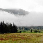 Das Kraterinnere des Pululahua. Vor langer Zeit war der Vulkan mal 7000 m hoch, dann brach die Spitze ein und bildete die heutige Caldera. Innen drin gibt es seit Urzeit Landwirtschaft.
