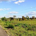 Dies ist die Landschaft in Südyukatan, nicht so richtig reizvoll.