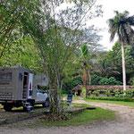 Unser Urwald-Campingplatz bei Palenque - und nachts wecken einen die Brüllaffen.