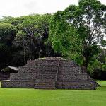 """Alte Pyramiden mit sauberem """"Rasen"""" und Urwald. Das ist eine Kombination, die uns immer wieder begeistert."""