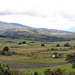 Die Hochfläche vor dem Nationalpark, die typische Landschaft in Ecuador, Wiesen übe Wiesen über Wiesen und keine Bäume.