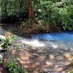 Der Rio Celeste. Vorher wasserklar, nachher schön blau gefärbt - eine scharfe Trennlinie.