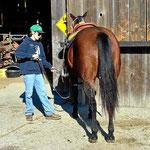 Der Rodeoreiter, seit dem 3. lebensjahr auf dem Pferd.