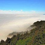 Und dies ist die andere Nebelseite des Parks