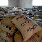 Und so werden die getrockneten Bohnen in alle Welt verschickt.