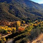 Herbststimmung an der King's Canyon Straße direkt vor der Sperre.
