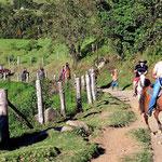 Reiterscharen im Cocoatal.