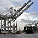 Seattle ist ein wichtiger Hafen. Die Containerkräne sind turmhoch.