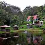 Der kleine Teich der Lodge.