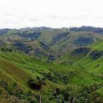 Die Landschaft zwischen Santo Domingo und der Küste ist hügelig. Die Hügel bestehen im wesentlichen aus Wiesen (ohne Rinder) und wenige Bäumen.