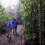 Zwei Wanderer auf der Suche nach dem Quetzal.