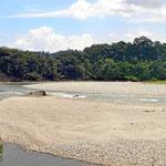 Die Flüsse sind von dichtem Urwald begrenzt.