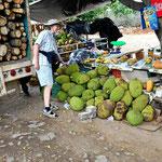 """Wir sind """"glücklich"""" - endlich sehen wior mal wieder die !""""Stinkefrucht"""" (Durian)."""