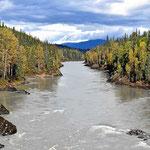 Ein Lachsfluss im Norden.