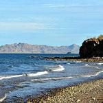 Unds dewr Strand von Mulege - ein WUndwerplatz zum Beobachten von Seevögeln.