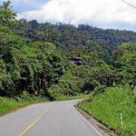Wir hatten mit endlosen Palmölplantagen auf unserer Anfahrt zum Guyabeno NP gerechnet, erleben aber eine waldreiche Landschaft mit verstreut liegenden Gehöften.