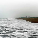 Die Küste im Nebel.