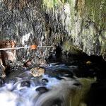 Ein Fluss fließt durch die Höhle, er kommt unterirdisch heraus und fließt oberirdisch ab.