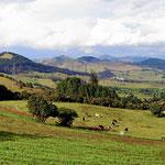 Typische kolumbianische Landschaft. Wälder haben wir außerhalb der Nationaparks kaum gesehen.