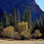 Herbststimmung im Yosemite.