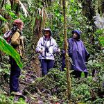 Ein interessaner Unterricht über Urwaldkunde.