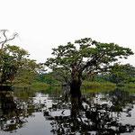 Die Grande Laguna ist ein Schwemmgebiet, dass ein halbes Jahr überflutet ist und zum Rest trocken ist.