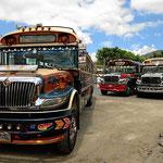 Und immer wider faszinieren uns die umgebauten amerikanischen Schulbusse.