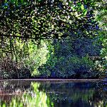 Genußfahrt durch eine Traum-Lagunenlandschaft.