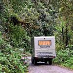 Weiterfahrt nach Mindo durch den Urwald.