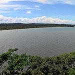 Karibikküste am Fort mit Mangroven.