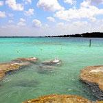 An der Cenote Azuo, so blau war das Wasser auch mal an der Laguna Azul.