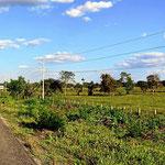 Und wieder die platte Yukatan.Landschaft, irgendwie wir in Norddeutschland.