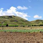 Wir fahren durch Indioland, kahle Berge mit Wiesenmustern auf den Hängen (Rinder sind nicht zu sehen.)