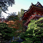 Im japanischen Teegarten.