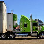 Ich liebe amerikanische Trucks, viel Farbe, viel Chrom